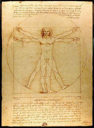 Insights-Da_Vinci_Vitruve_Luc_Viatour