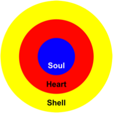 Insights_soul_heart_shell